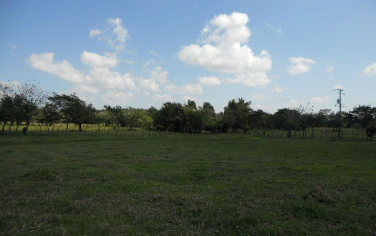 Foto de rancho en venta en carr villahermosa macuspana km 27 sn, macuspana centro, macuspana, tabasco, 1696846 no 05