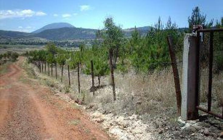 Foto de terreno habitacional en venta en carrcerrito colorado, tierras blancas, atlacomulco, estado de méxico, 251565 no 03