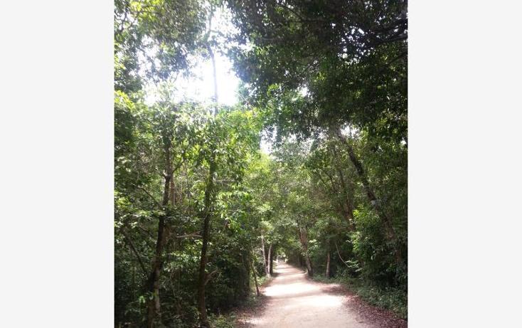 Foto de terreno comercial en venta en carretera 307 8kms, akumal, tulum, quintana roo, 2677900 No. 02