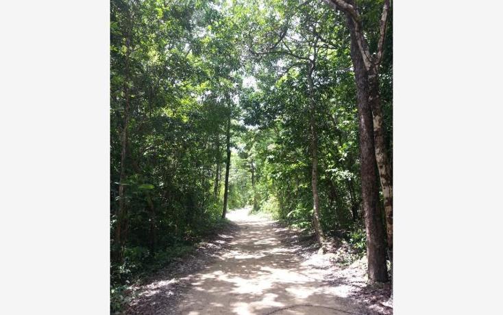 Foto de terreno comercial en venta en carretera 307 8kms, akumal, tulum, quintana roo, 2677900 No. 04