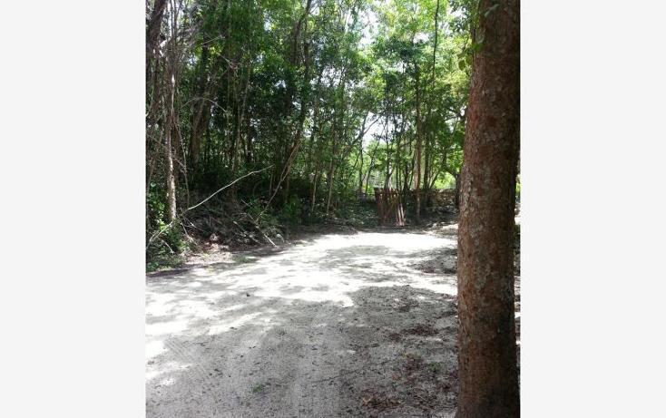 Foto de terreno comercial en venta en carretera 307 8kms, akumal, tulum, quintana roo, 2677900 No. 05