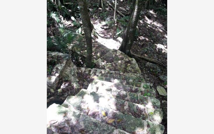 Foto de terreno comercial en venta en carretera 307 8kms, akumal, tulum, quintana roo, 2677900 No. 07