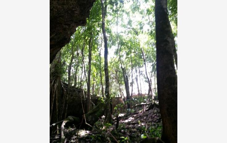 Foto de terreno comercial en venta en carretera 307 8kms, akumal, tulum, quintana roo, 2677900 No. 17