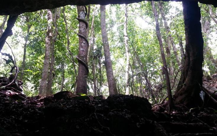 Foto de terreno comercial en venta en carretera 307 8kms, akumal, tulum, quintana roo, 2677900 No. 24
