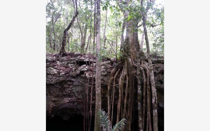 Foto de terreno comercial en venta en carretera 307 8kms, akumal, tulum, quintana roo, 2677900 No. 25