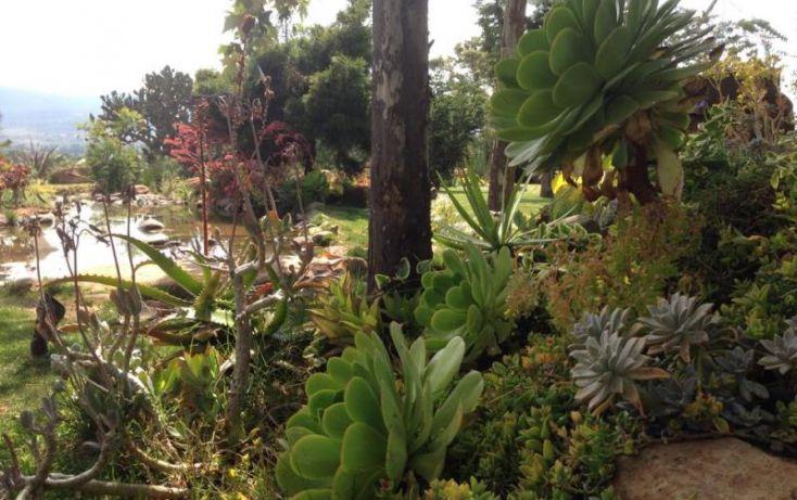 Foto de casa en venta en carretera 437 guadalajara a tapalpa 690, atemajac de brizuela, atemajac de brizuela, jalisco, 1455725 no 66