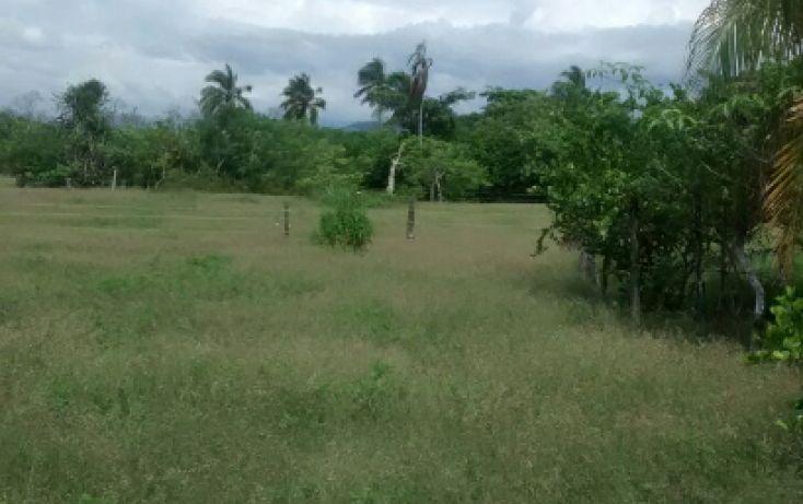 Foto de terreno habitacional en venta en carretera a barra de coyuca, pie de la cuesta, acapulco de juárez, guerrero, 1700804 no 04