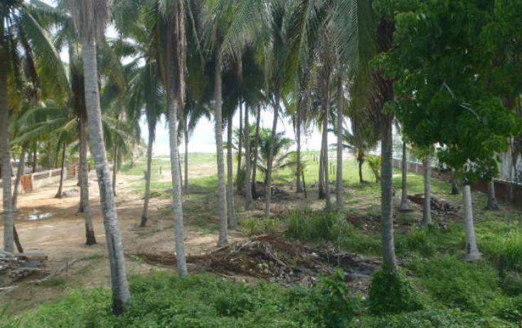 Foto de terreno habitacional en venta en carretera a barra de potosi, aeropuerto, zihuatanejo de azueta, guerrero, 1333603 no 02