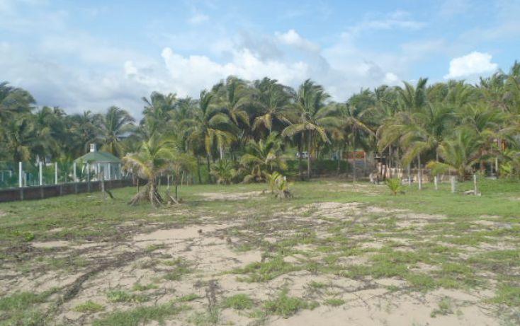 Foto de terreno habitacional en venta en carretera a barra de potosi, aeropuerto, zihuatanejo de azueta, guerrero, 1333603 no 08
