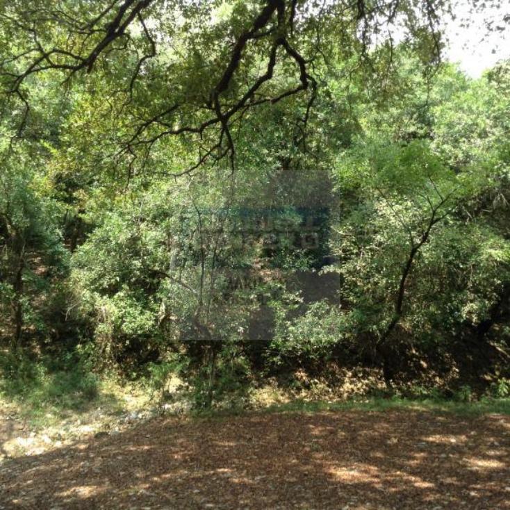 Foto de terreno habitacional en venta en  , paras, montemorelos, nuevo león, 1364495 No. 02