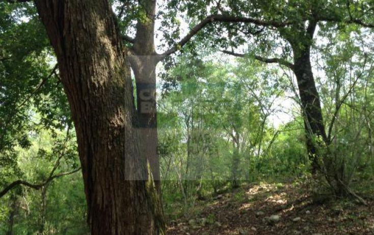 Foto de terreno habitacional en venta en carretera a bioparque, paras, montemorelos, nuevo león, 1364495 no 03