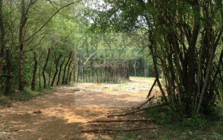 Foto de terreno habitacional en venta en carretera a bioparque, paras, montemorelos, nuevo león, 1364495 no 05