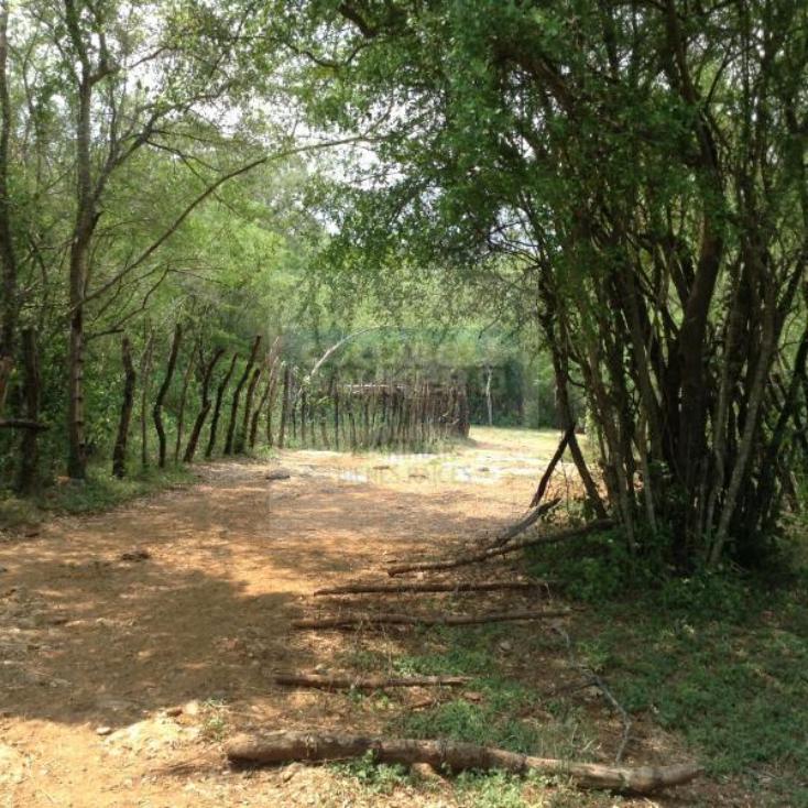 Foto de terreno habitacional en venta en  , paras, montemorelos, nuevo león, 1364495 No. 05