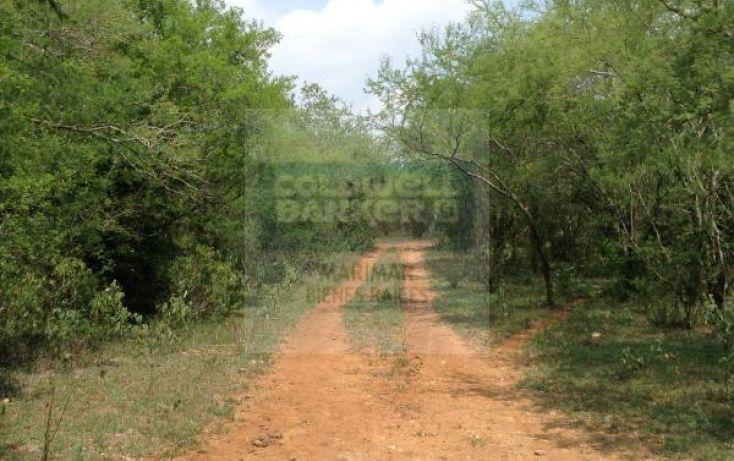 Foto de terreno habitacional en venta en carretera a bioparque, paras, montemorelos, nuevo león, 1364495 no 06