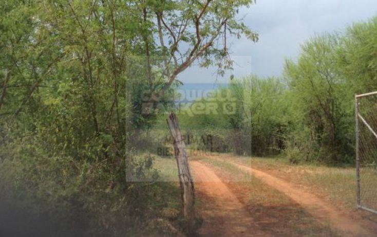 Foto de terreno habitacional en venta en carretera a bioparque, paras, montemorelos, nuevo león, 1364495 no 07