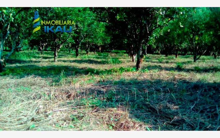Foto de terreno habitacional en renta en carretera a cazones kilometro 48 , la florida, poza rica de hidalgo, veracruz de ignacio de la llave, 2702190 No. 03