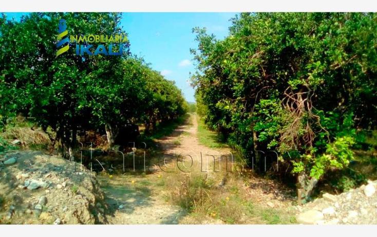 Foto de terreno habitacional en renta en carretera a cazones kilometro 48 , la florida, poza rica de hidalgo, veracruz de ignacio de la llave, 2702190 No. 19