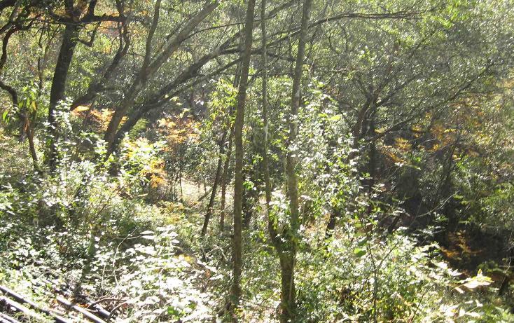 Foto de terreno habitacional en venta en carretera a cola de caballo 1, el cercado centro, santiago, nuevo león, 627974 no 01