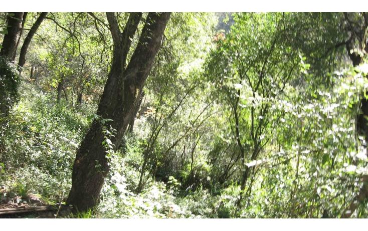 Foto de terreno habitacional en venta en carretera a cola de caballo 1, el cercado centro, santiago, nuevo león, 627974 no 02