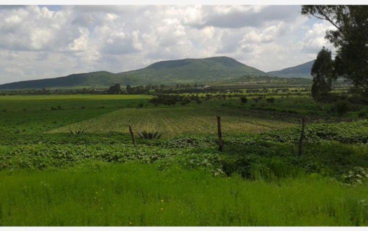 Foto de rancho en venta en carretera a jalpa 8, insurgentes, san miguel de allende, guanajuato, 1691726 no 20