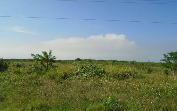 Foto de terreno habitacional en venta en carretera a la termo electrica, la barra norte, tuxpan, veracruz, 1721012 no 01