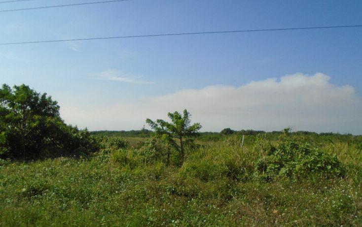 Foto de terreno habitacional en venta en carretera a la termo electrica, la barra norte, tuxpan, veracruz, 1721012 no 03
