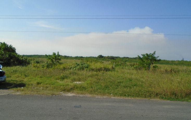 Foto de terreno habitacional en venta en carretera a la termo electrica, la barra norte, tuxpan, veracruz, 1721012 no 04