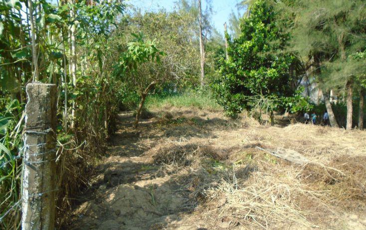 Foto de terreno habitacional en venta en carretera a la termo, la barra norte, tuxpan, veracruz, 1721006 no 01