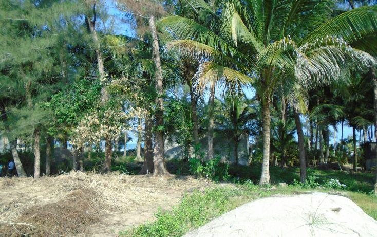 Foto de terreno habitacional en venta en carretera a la termo, la barra norte, tuxpan, veracruz, 1721006 no 02