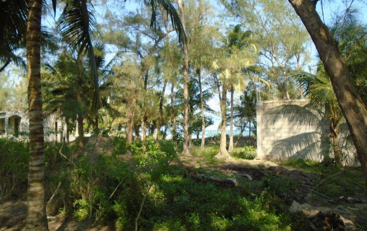 Foto de terreno habitacional en venta en carretera a la termo, la barra norte, tuxpan, veracruz, 1721006 no 04