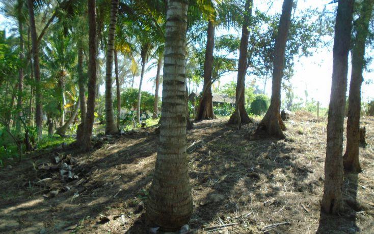 Foto de terreno habitacional en venta en carretera a la termo, la barra norte, tuxpan, veracruz, 1721006 no 06