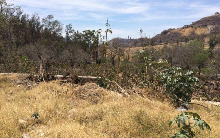 Foto de terreno habitacional en venta en carretera a nogales km 15 16, bosques de san isidro, zapopan, jalisco, 1905362 no 05
