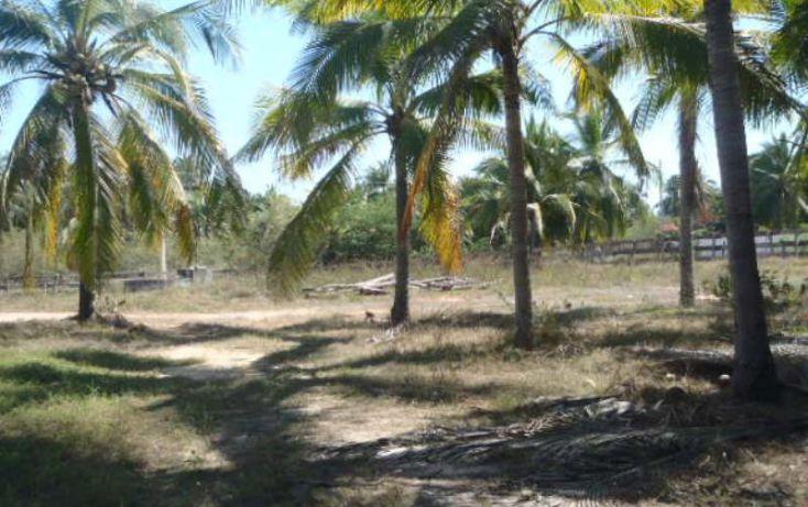 Foto de terreno habitacional en venta en carretera a playa blanca, aeropuerto, zihuatanejo de azueta, guerrero, 1647836 no 10