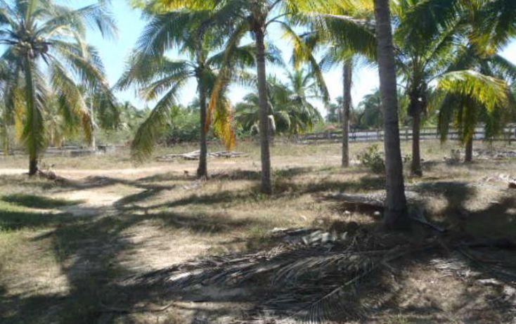 Foto de terreno habitacional en venta en carretera a playa blanca, aeropuerto, zihuatanejo de azueta, guerrero, 1647836 no 15