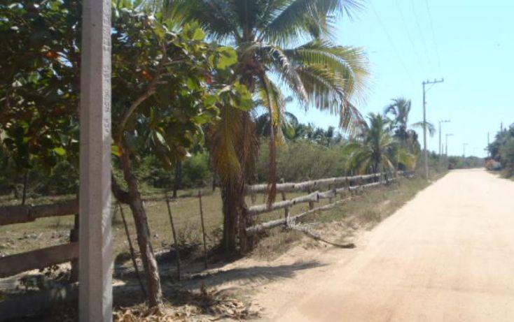 Foto de terreno habitacional en venta en carretera a playa blanca, aeropuerto, zihuatanejo de azueta, guerrero, 1647836 no 19
