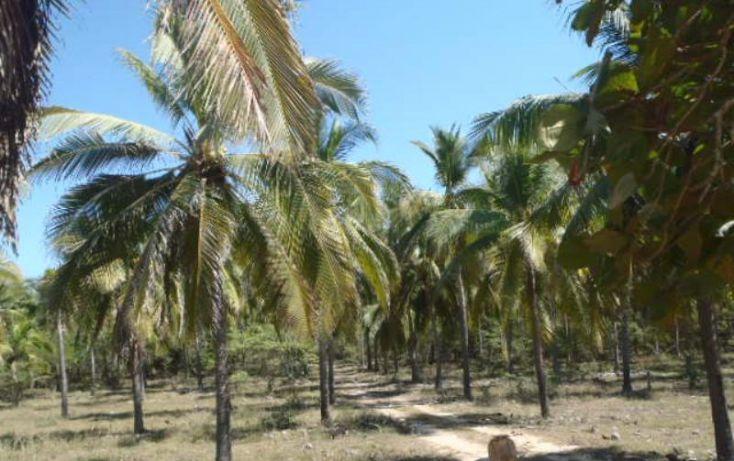 Foto de terreno habitacional en venta en carretera a playa blanca, aeropuerto, zihuatanejo de azueta, guerrero, 1647836 no 20