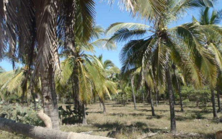 Foto de terreno habitacional en venta en carretera a playa blanca, aeropuerto, zihuatanejo de azueta, guerrero, 1647836 no 21