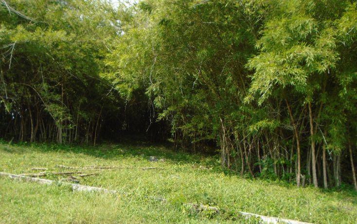 Foto de rancho en venta en carretera a tantoyuca, tantoyuca, tantoyuca, veracruz, 1721044 no 02