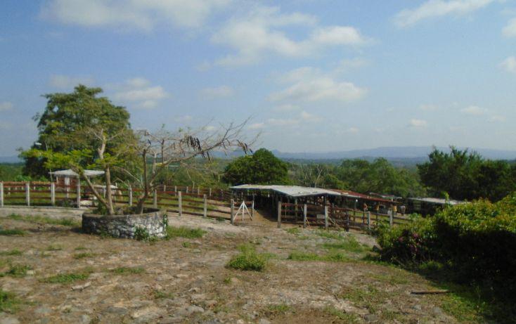 Foto de rancho en venta en carretera a tantoyuca, tantoyuca, tantoyuca, veracruz, 1721044 no 03