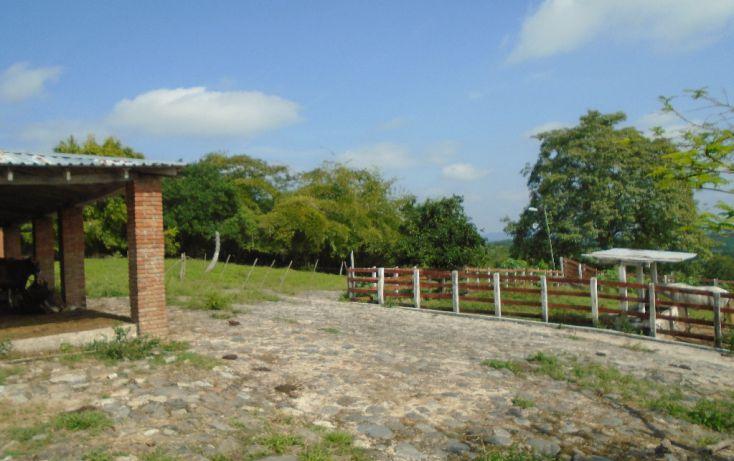 Foto de rancho en venta en carretera a tantoyuca, tantoyuca, tantoyuca, veracruz, 1721044 no 04