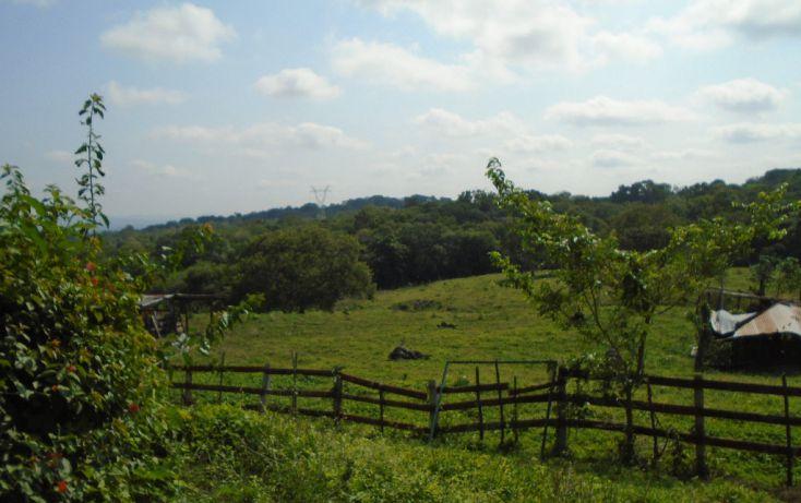 Foto de rancho en venta en carretera a tantoyuca, tantoyuca, tantoyuca, veracruz, 1721044 no 05