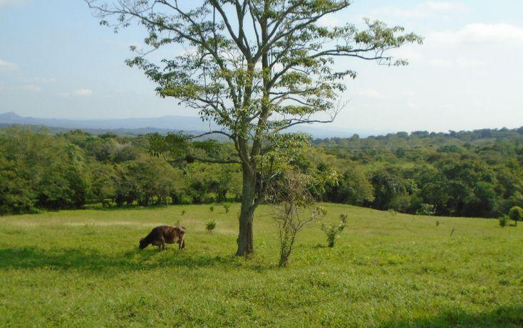 Foto de rancho en venta en carretera a tantoyuca, tantoyuca, tantoyuca, veracruz, 1721044 no 09