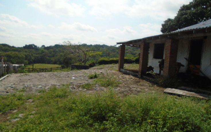 Foto de rancho en venta en carretera a tantoyuca, tantoyuca, tantoyuca, veracruz, 1721044 no 10
