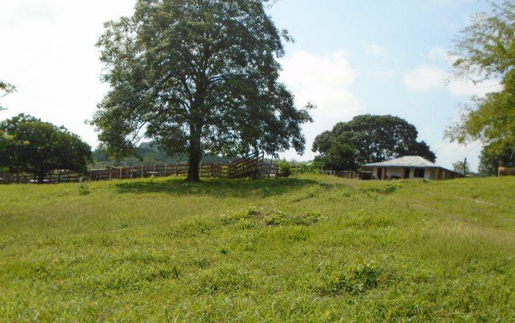 Foto de rancho en venta en carretera a tantoyuca, tantoyuca, tantoyuca, veracruz, 1721044 no 13