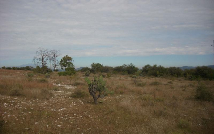 Foto de terreno comercial en venta en carretera a tecali, cuautinchan, cuautinchán, puebla, 894225 no 04