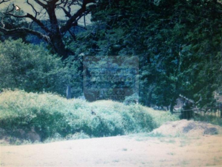 Foto de terreno habitacional en venta en  , san sebastián del oeste, san sebastián del oeste, jalisco, 1472327 No. 02
