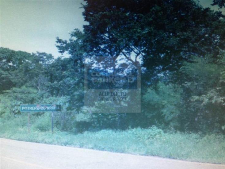 Foto de terreno habitacional en venta en  , san sebastián del oeste, san sebastián del oeste, jalisco, 1472327 No. 03