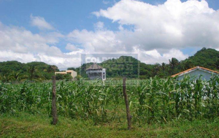 Foto de terreno habitacional en venta en carretera a valle, brisas, bahía de banderas, nayarit, 740857 no 10