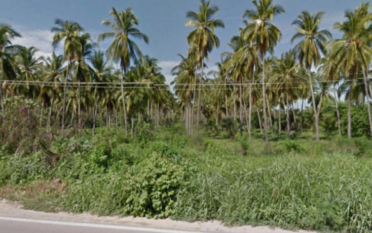 Foto de terreno habitacional en venta en carretera acapulcozihuatanejo, coyuca de benítez centro, coyuca de benítez, guerrero, 1701190 no 05