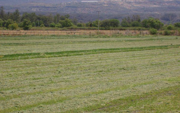 Foto de terreno habitacional en venta en carretera acatlan ciudad guzman sn, el plan, acatlán de juárez, jalisco, 1714514 no 02